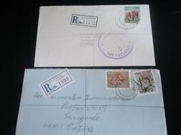 2 Lettres Recommandées KENMARE Et KLERKSDORP , Thème FLEURS - Afrique Du Sud (1961-...)