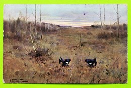 13607 Russia. Hunting. Black Grouses. CPA - Hunting