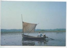 Lac De Grand Lieu : Pêcheur Sur Une Plate à Voile  - édit Maison Du Pêcheur Passy (44) Cp Vierge - Fishing