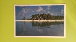 Cartolina MALDIVE - Male Atoll - Viaggiata - Postcard - Maldive