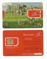 MADAGASCAR MADAGASKAR  Carte SIM NEUVE  /  MALAGASY NEW SIM Card LIFE MADAGASCAR - Madagascar