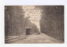 Paris Plage. Le Tramway Dans La Forêt. Avec Cyclistes. (2821) - Strassenbahnen
