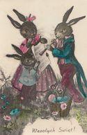 Rabbit Musicians Playing Trumpet Orchestra Vintage Postcard - Non Classés