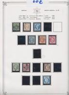 Rare Et Très Belle Collection D'étoiles Classée Par Numéro D'étoile Avec Les Différents Timbres, L'étoile 5. - France