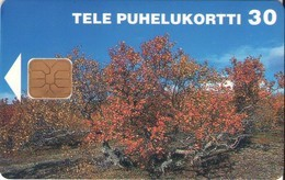 TARJETA TELEFONICA DE FINLANDIA (421). - Finlandia