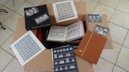 Gros Carton Dont Feuilles N° 842A + 843 ** + Timbres ** An 40 + Albums Remplis De Timbres Oblitérés. Voir Commentaires ! - Stamps