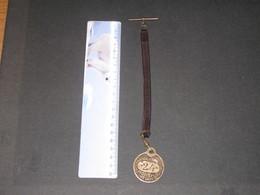 AUBERGE DE LA TOURNETTE-MONTMIIN HTE SAVOIE- Médaille Avec Barre Boutonnière -circa 1910 ? - France
