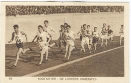 NETHERLANDS Unused Official Olympic Postcard Nr. 85 With The 5000 Meters During The Race. - Summer 1928: Amsterdam