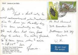 Belize 1995 City Harlequine Beetle Coconut Weevil Viewcard - Belize (1973-...)