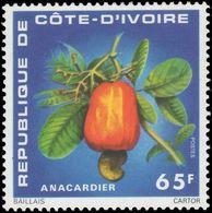 Ivory Coast 1976 Cashew Nuts Unmounted Mint. - Ivory Coast (1960-...)