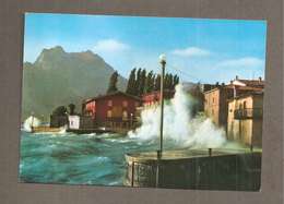 TORBOLE LAGO DI GARDA BURRASCA CARTOLINA   1986 - Italia