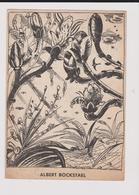 Carte Albert Bockstael - Andere Zeichner