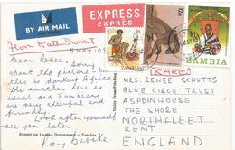 Zambia 1985 Kitwe Baboon Monkey President Kuanda Express Viewcard - Zambia (1965-...)