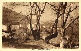 CORSE  -  Bocognano - France
