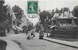 14)  CABOURG  - Avenue De La Mer - Cabourg
