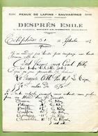 """NOGENT-EN-BASSIGNY  (52) : """" PEAUX DE LAPINS  : Emile DESPRES """"  1935 - France"""
