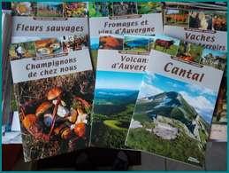 LIVRE NEUF PRIX REDUIT 6 GUIDES DECOUVERTE AUVERGNE CANTAL FROMAGES FLEUR CHAMPIGNON VOLCANS VINS VACHE Tourisme Voyage - Turismo