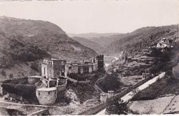 ALLIER,auvergne,chateau De Chouvigny,castrum Gallo Romain,prés Vichy,montluçon,vallée Sioule,photo La Cigogne,rare - Non Classificati