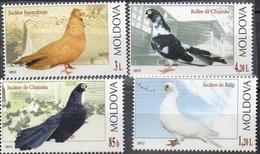 MiNr. 799-802 - Haustaubenrassen - Postfrisch - Moldawien (Moldau)