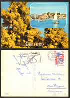 France CANNES  Stamp  #25954 - Cannes