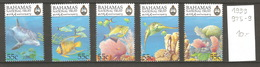 Bahamas, Année 1999, Faune Sous-marine - Bahamas (1973-...)
