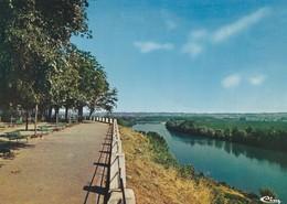 Meilhan Sur Garonne , La Garonne Vue Du Tertre - Meilhan Sur Garonne