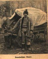 Rumänischer Bauer / Druck, Entnommen Aus Zeitschrift /1916 - Bücher, Zeitschriften, Comics