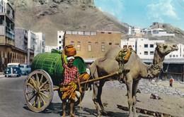 Postcard Aden / Yemen Arab Water Seller Crater My Ref  B12174 - Yemen