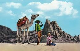 Postcard Aden / Yemen Lookout In The Desert Mountains My Ref  B12176 - Yemen