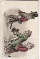 CPA - Carte  Chat Illustrateur  - Chats Humanisés - - Gatos