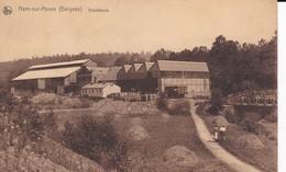 HAM-sur-HYEURE  -  Beignée, Gobeleterie - Ham-sur-Heure-Nalinnes