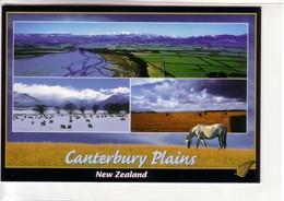 Canterbury Plains, New Zealand ! Tri-View ! - New Zealand