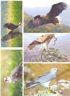 2016. Predatory Birds Of Moldova, Prepayed Post Cards, Set Of 9v, Mint/** - Aigles & Rapaces Diurnes