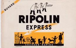 RIPOLIN EXPRESS - Paints