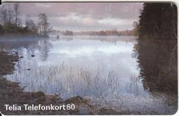 SWEDEN(chip) - Landscape, 05/96, Used - Sweden