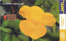 TARJETA TELEFONICA DE URUGUAY, 170a (071) FLORA - Uruguay