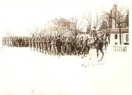 Photographie Militaire, Revue Du 184e D'artillerie De Valence (RALT), Photo Louis De 1931, Capitaine à Cheval - War, Military