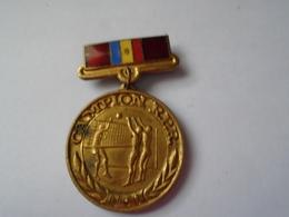 Romania - Popular Republic - 1959 Sport Badge - Volleyball - RPR Champion - Volleyball