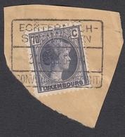 AMBULANT/BAHNPOST: ECHTERNACH-SENNINGEN SUR FRAGMENT. - 1926-39 Charlotte De Profil à Droite