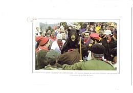 Cpm - 66 - SAINT LEURENT DE CERDAN - Fête De L'OURS - Homme Déguisé - Animation - 2002 - Autres Communes