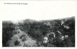 Les Ruines Et Le Fond De LOGNE - Ferrieres