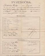 CROATIA, ZAGREB  --  ZENSKA OBRTNA SKOLA  ~~.  SVJEDOCBA, CERTIFICATE  - 1891  - - Diploma & School Reports