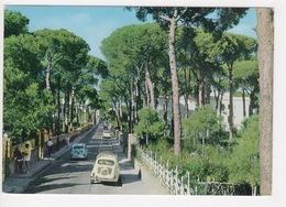 ^ FORIO D'ISCHIA LA PINETA AUTO CAR PANORAMA 182A - Napoli (Naples)