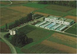 Sandoz AG, Agrobiologische Versuchsstation - 4108 Witterswil - Luftaufnahme - SO Soleure