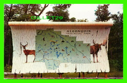 HUNSTVILLE, ONTARIO - THE GIANT MAP OF ALGONQUIN PROVINCIAL PARK -  WINGER WHOLESALE - - Ontario