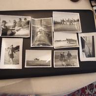 Lot De 31 Photos Militaires à Identifier Avion Aviateur Pilote Parachutiste - Guerre, Militaire