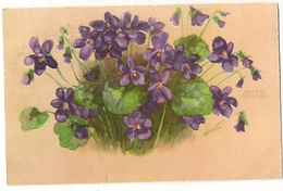 131 - Bouquet De Violettes - Petersen, Hannes