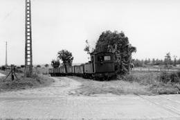 Entre Meaux Et Penchard, PN Sur La N 330. Tramway Meaux - Dammartin. Cliché Jacques Bazin. 08-10-1955 - Trains