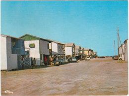 11. Gf. GRUISSAN. Maisons Sur Pilotis - Autres Communes