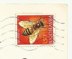 Yugoslavia Insect Bees ( Apis Mellifica ) Used 1978 - Honeybees